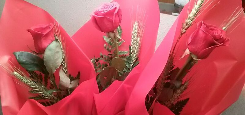 Rosas Sant Jordi